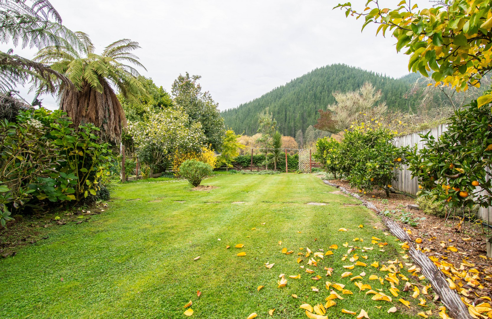 46 Riwaka Valley Left Branch Road, Riwaka #22 -- listing/10095/v.jpeg