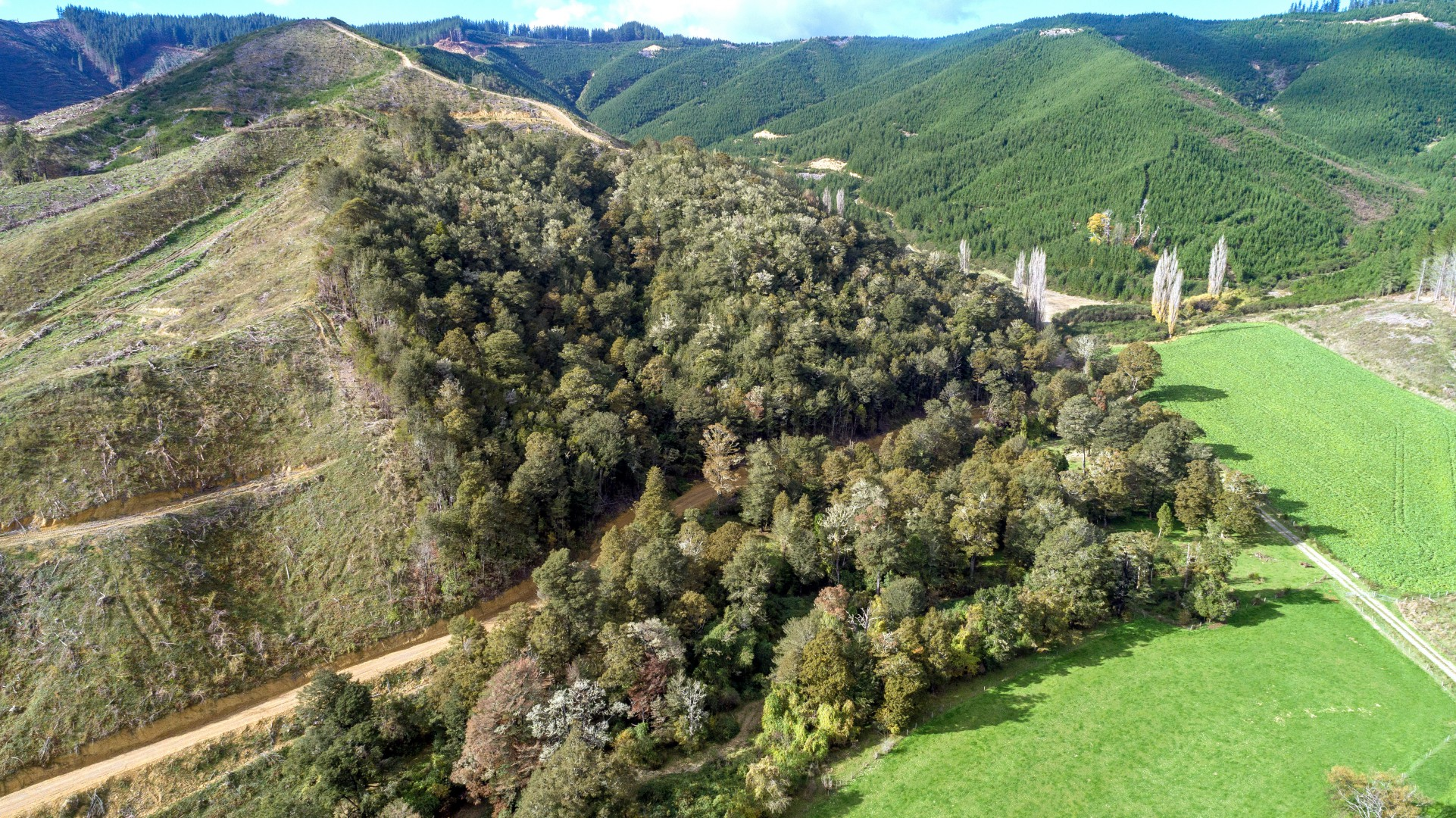 Lot 5 Forest Creek Road #9 -- listing/10156/h.jpeg