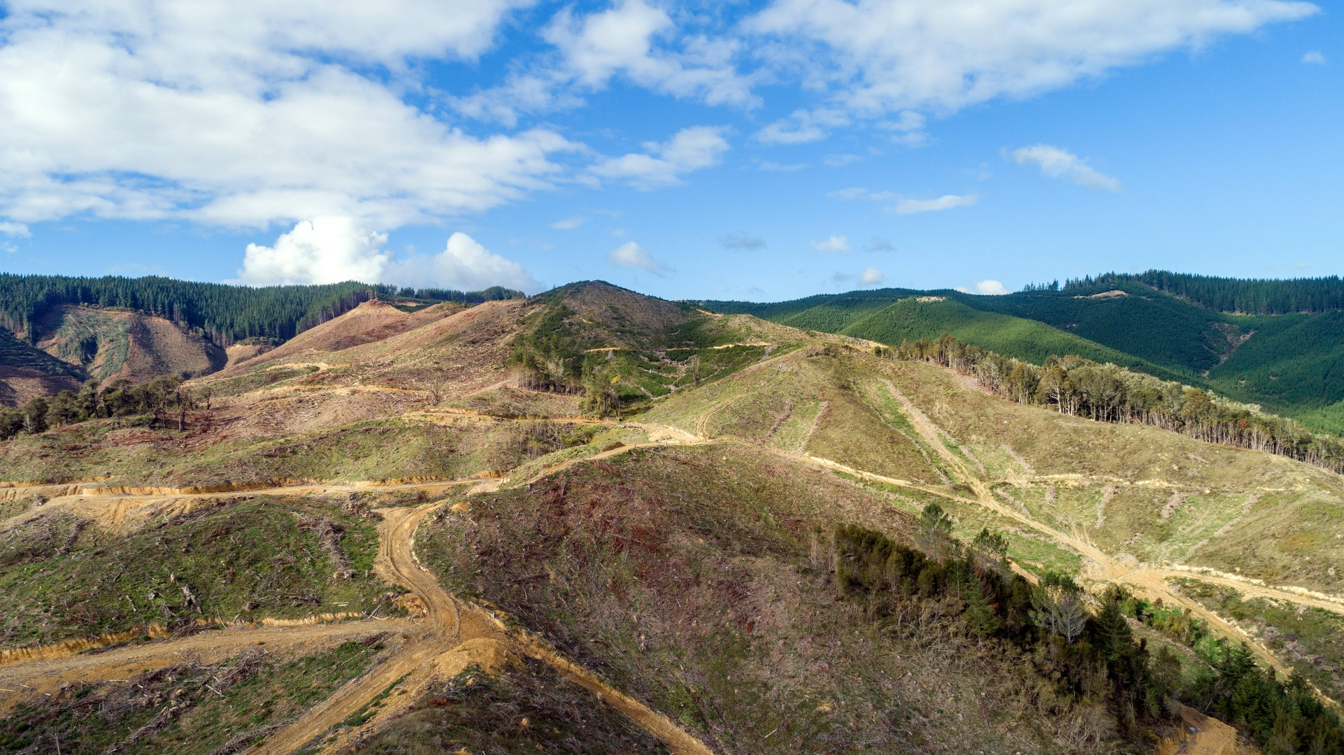 Lot 5 Forest Creek Road #14 -- listing/10156/n.jpeg