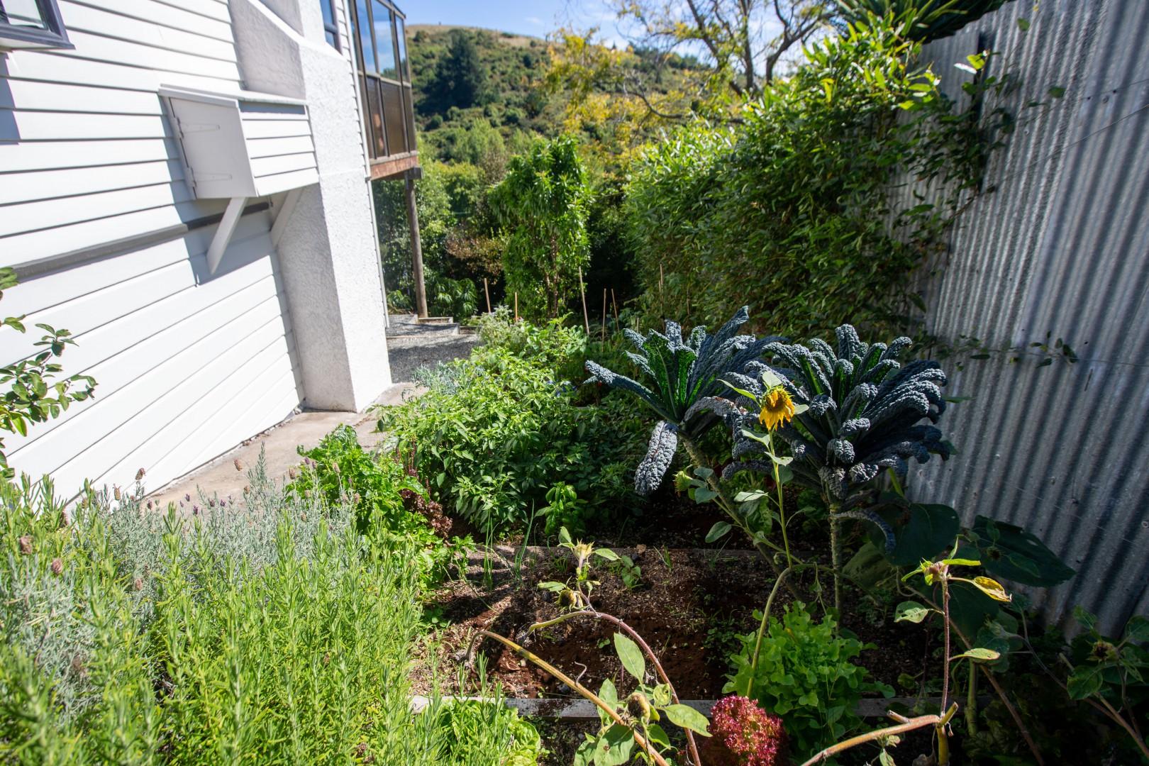 7 Thompson Terrace, Toi Toi #19 -- listing/11063/s-v2.jpeg