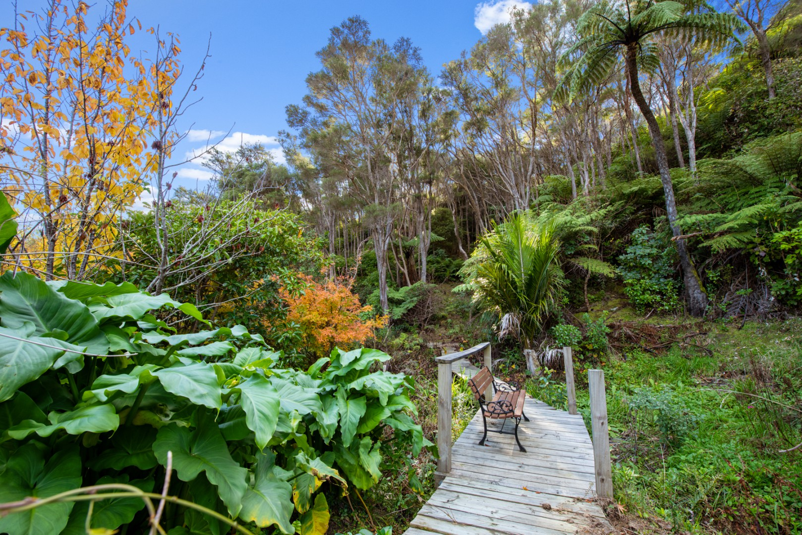 1100 Elie Bay Road - Crail Bay, Marlborough Sounds #3 -- listing/11168/b-v2.jpeg