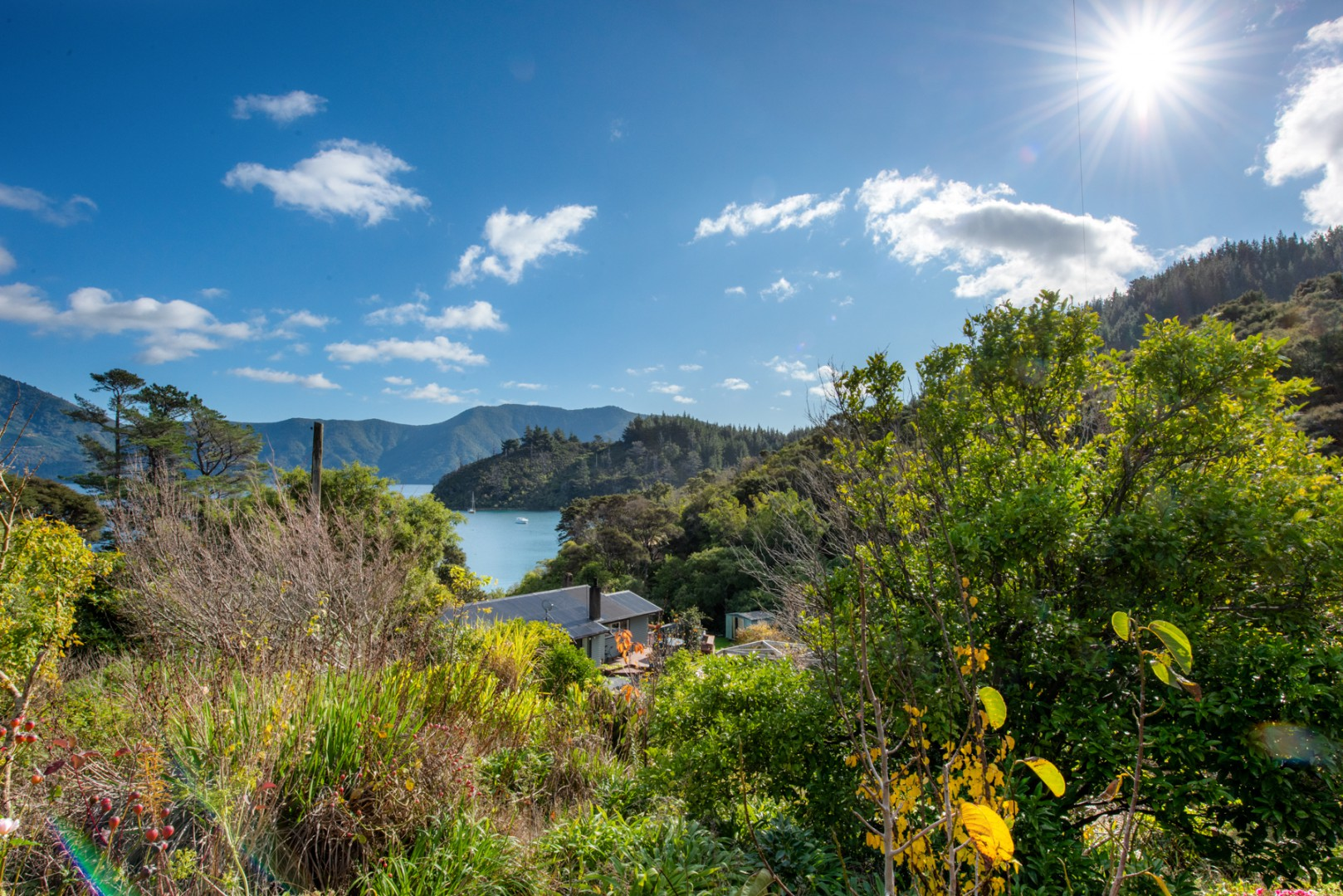 1100 Elie Bay Road - Crail Bay, Marlborough Sounds #8 -- listing/11168/g-v2.jpeg