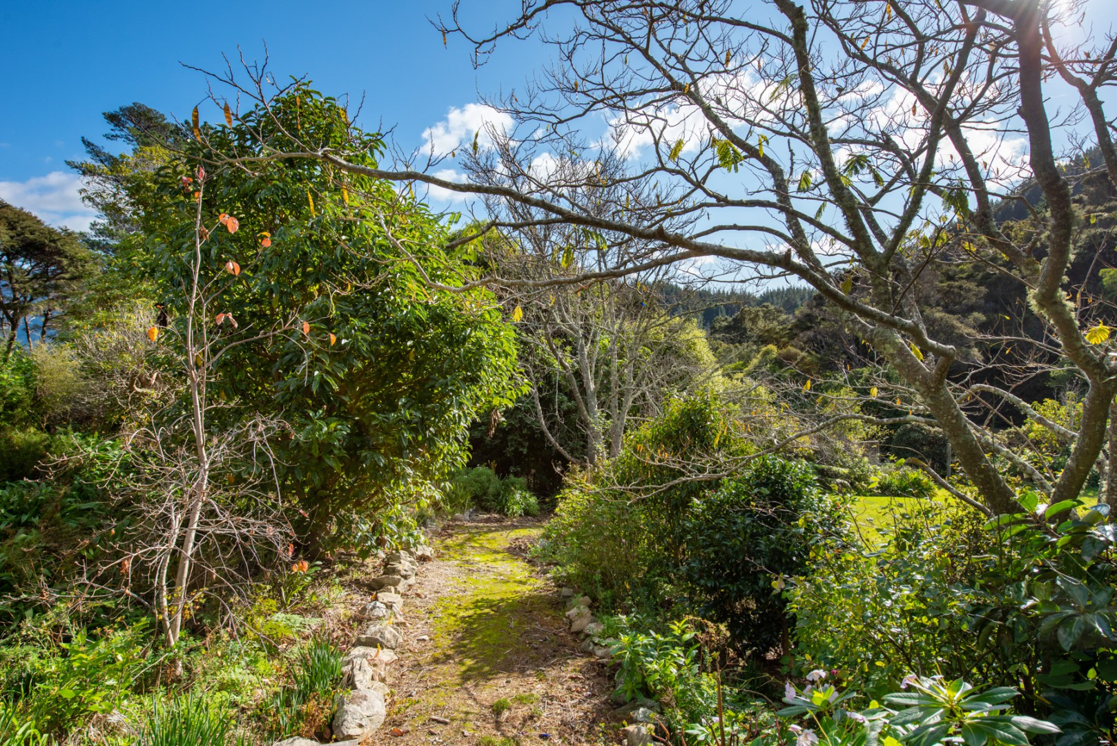 1100 Elie Bay Road - Crail Bay, Marlborough Sounds #9 -- listing/11168/h-v2.jpeg