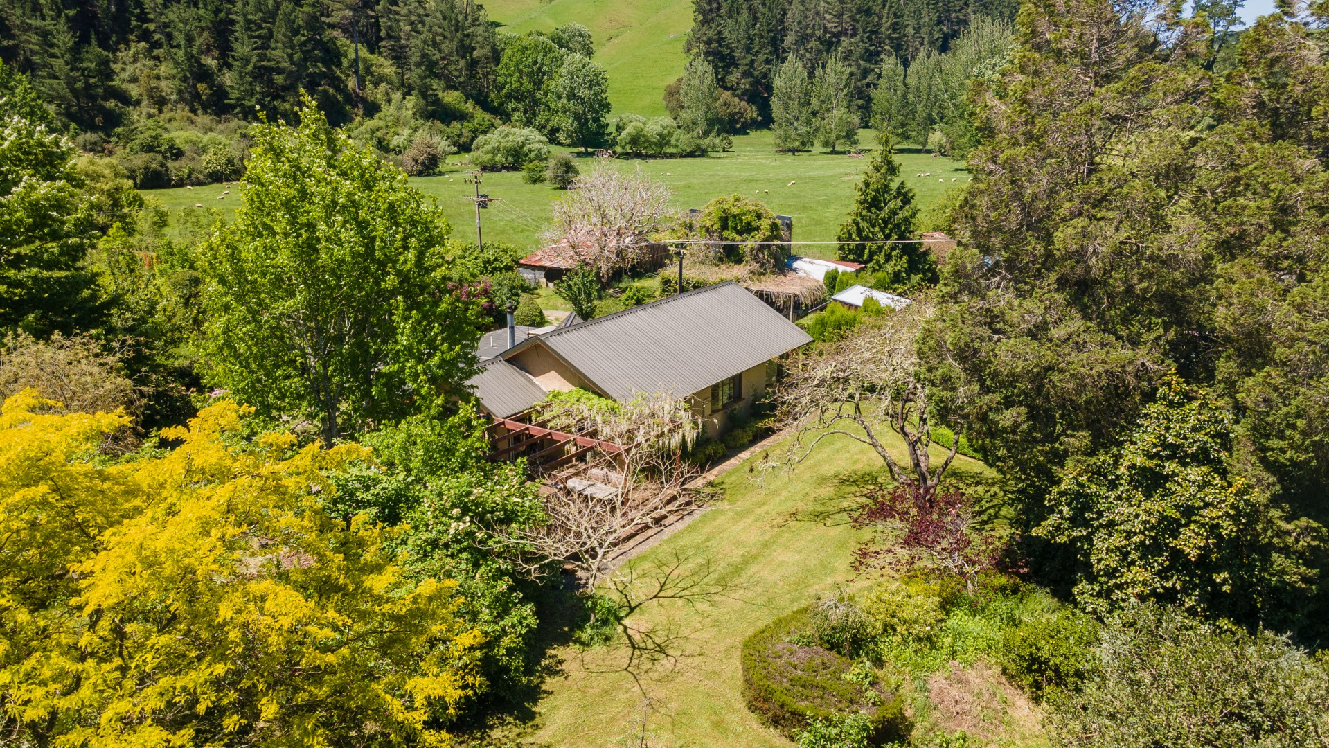 500 Dovedale Road, Dovedale #8 -- listing/11708/g.jpeg