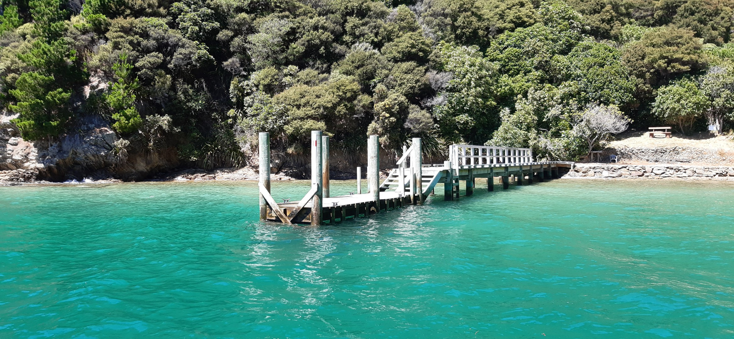- Driftwood Bay, Arapawa Island, Marlborough Sounds #2 -- listing/11929/a.jpeg