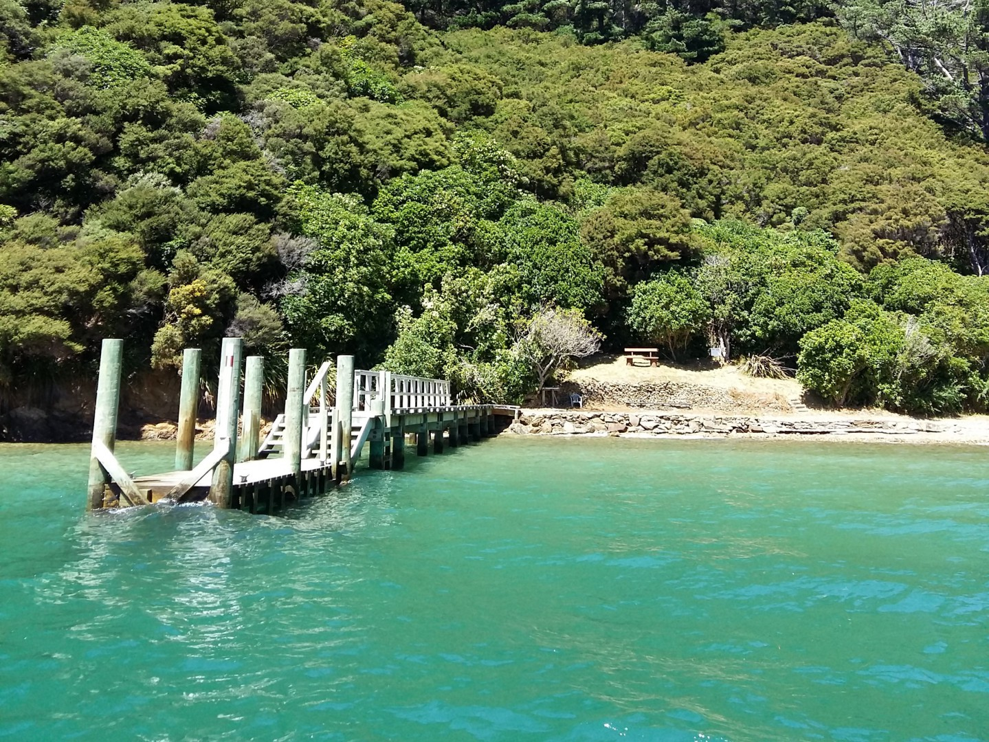 - Driftwood Bay, Arapawa Island, Marlborough Sounds #3 -- listing/11929/b.jpeg