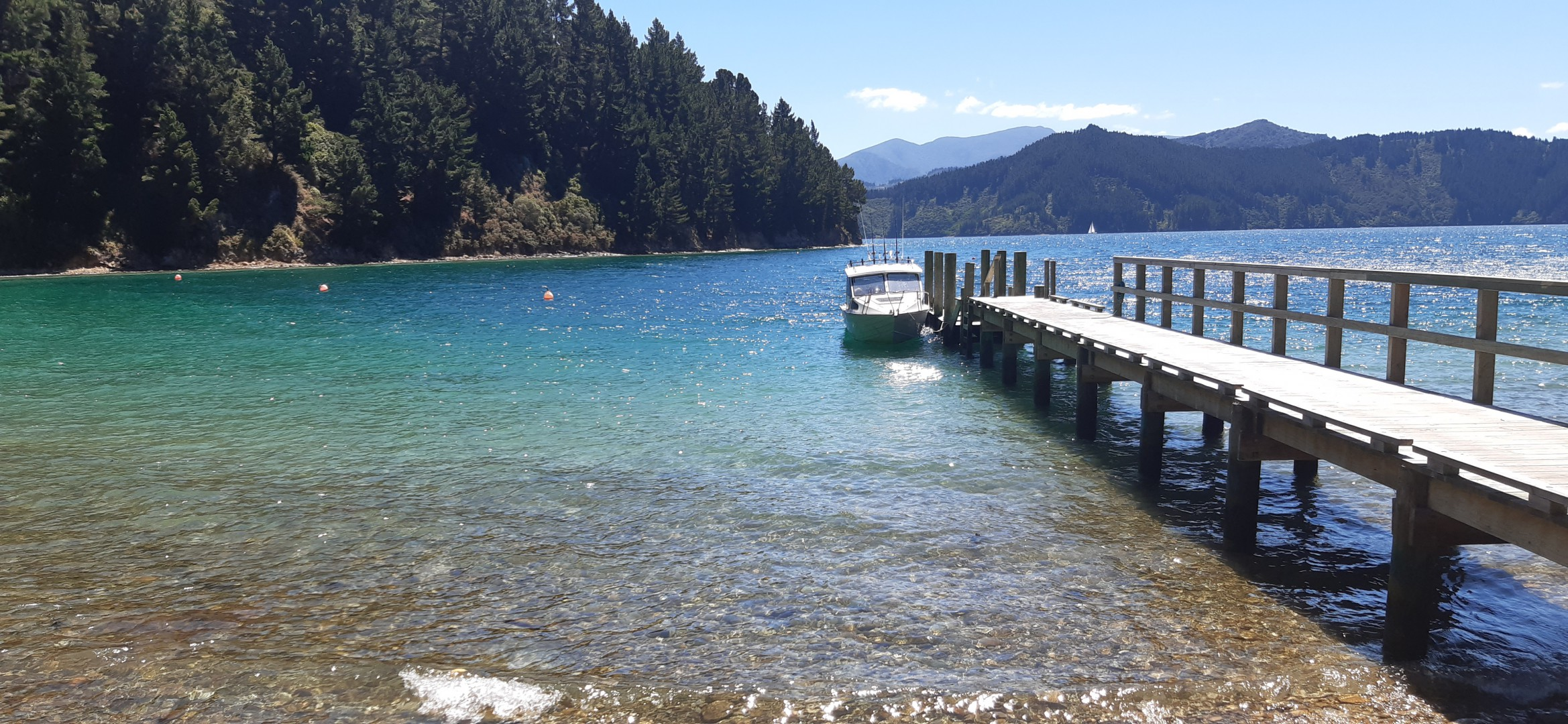 - Driftwood Bay, Arapawa Island, Marlborough Sounds #4 -- listing/11929/c.jpeg