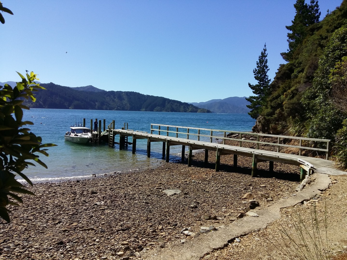 - Driftwood Bay, Arapawa Island, Marlborough Sounds #7 -- listing/11929/f.jpeg