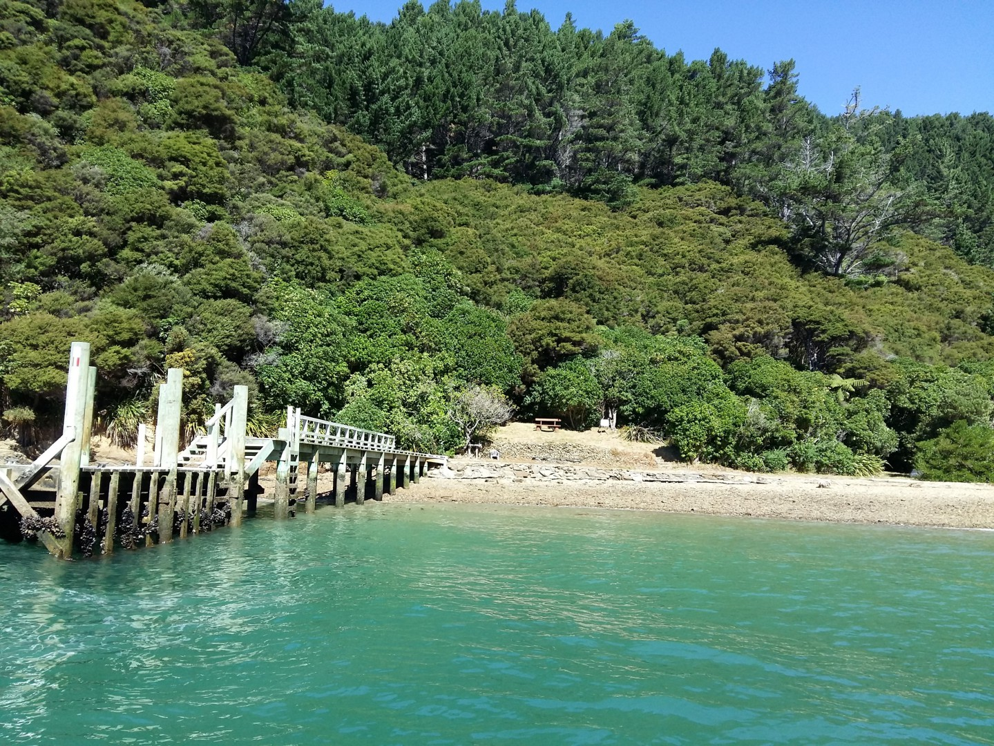- Driftwood Bay, Arapawa Island, Marlborough Sounds #8 -- listing/11929/g.jpeg