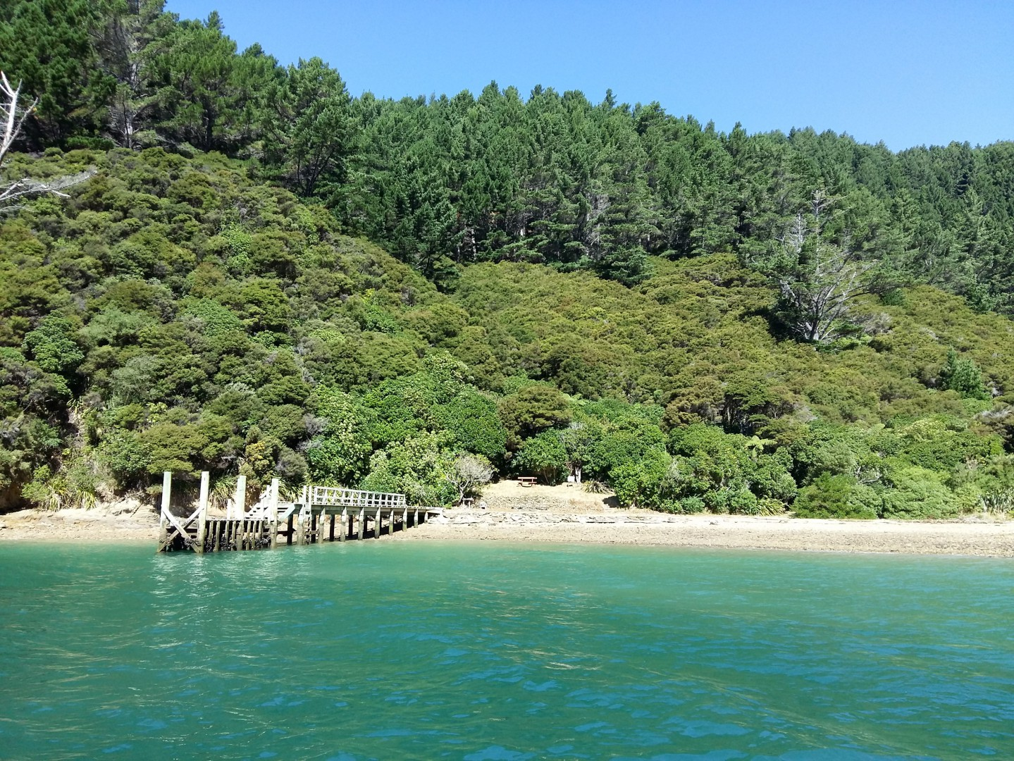 - Driftwood Bay, Arapawa Island, Marlborough Sounds #9 -- listing/11929/h.jpeg