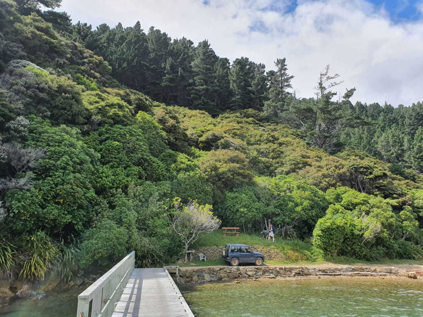 - Driftwood Bay, Arapawa Island, Marlborough Sounds #10 -- listing/11929/i.jpeg