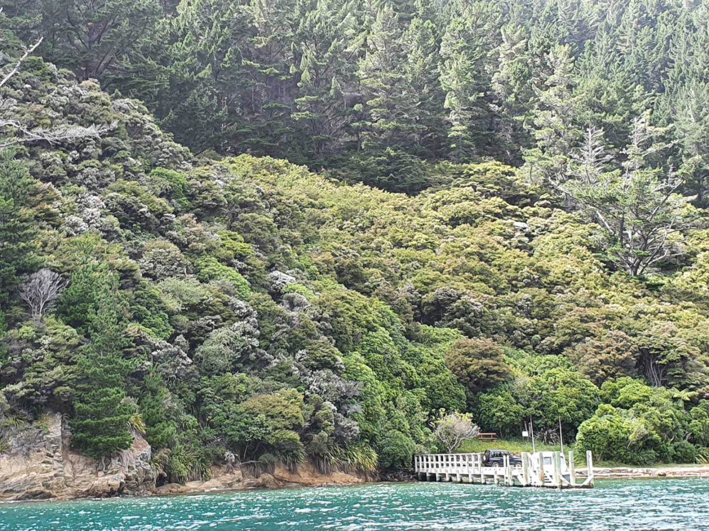 - Driftwood Bay, Arapawa Island, Marlborough Sounds #12 -- listing/11929/k.jpeg