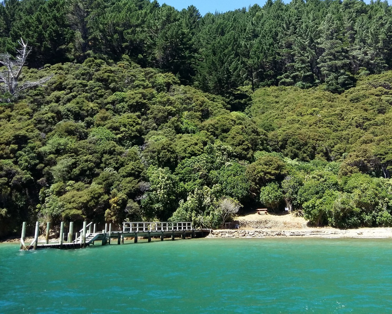- Driftwood Bay, Arapawa Island, Marlborough Sounds #1 -- listing/11929/m.jpeg