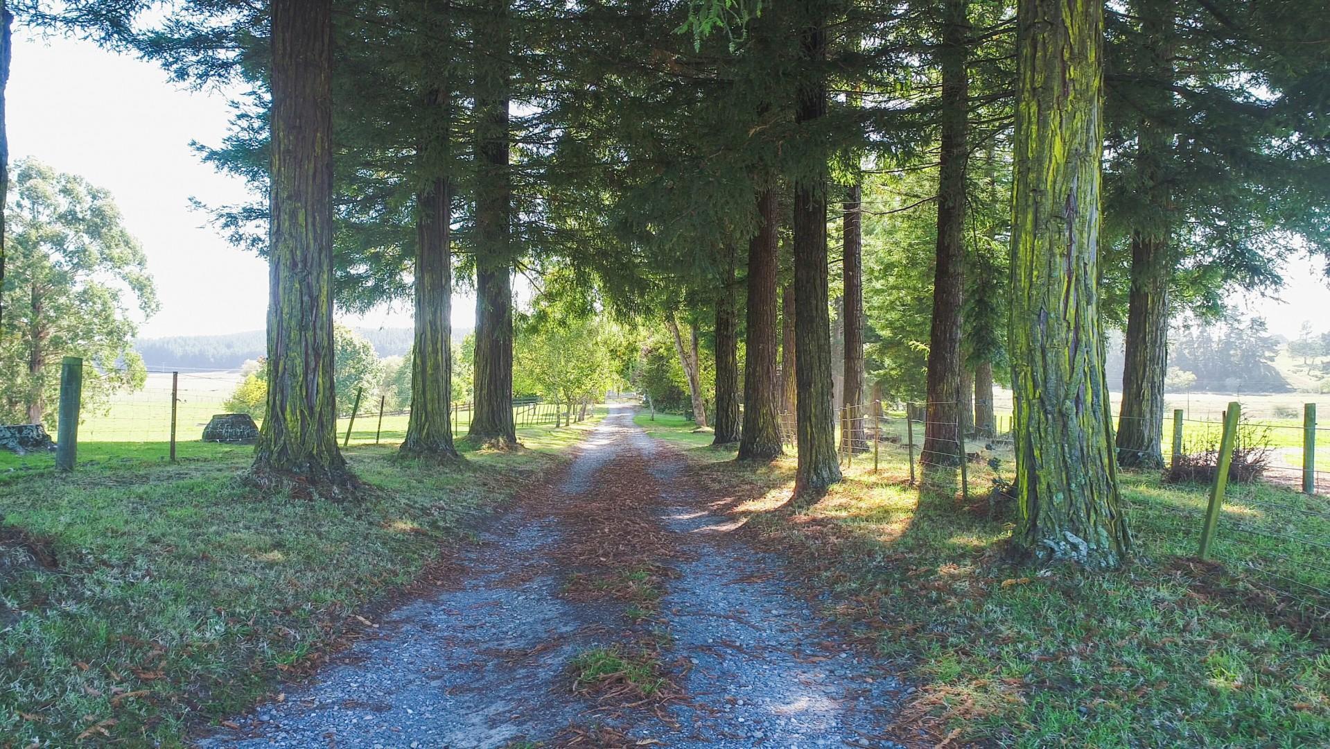 42 Best Road, Upper Moutere #2 -- listing/12091/a.jpeg