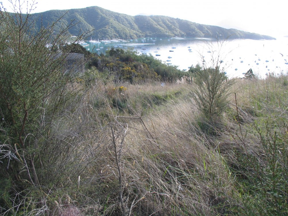 Lot 2 Waimarama Street, Picton #6
