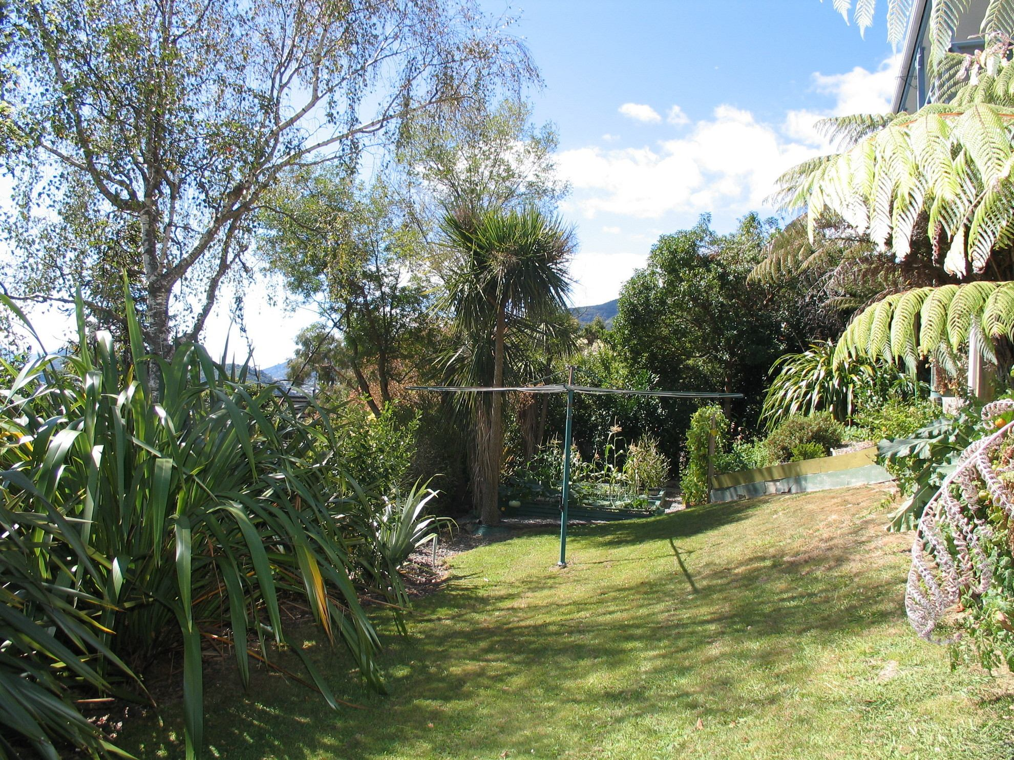 6 Webster Place, Picton #5 -- listing/4075/d.jpeg