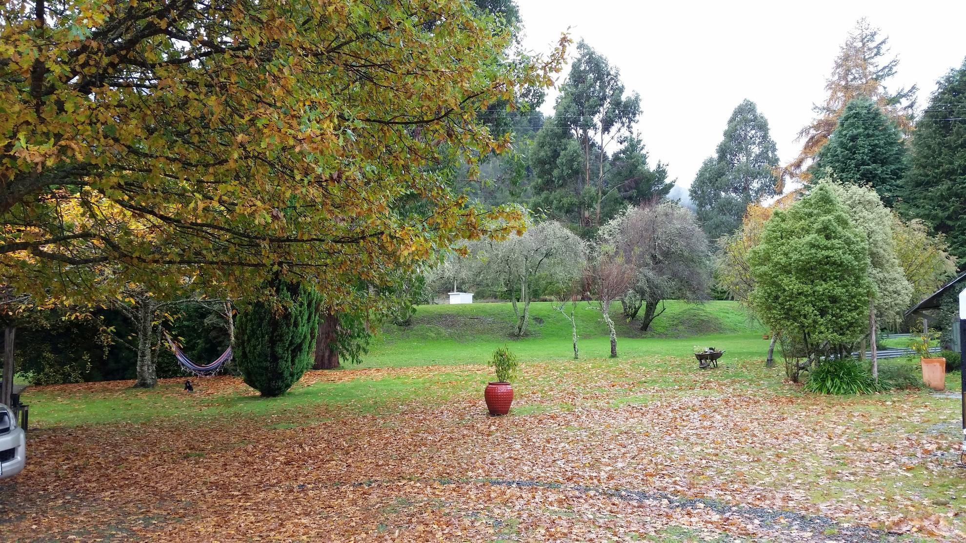 2 Gowan Valley Road, Nelson Lakes #13 -- listing/4254/l.jpeg