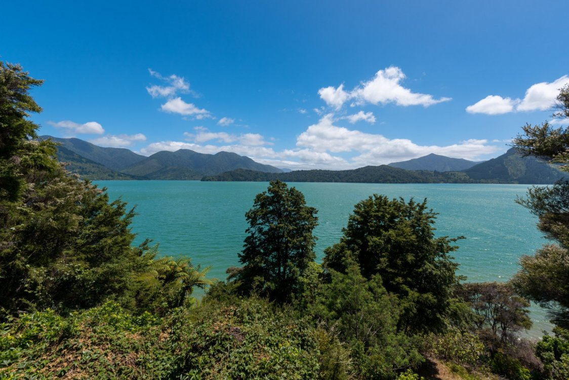 646 Kenepuru Road, Mahau Sound #16