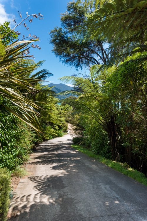 646 Kenepuru Road, Mahau Sound #17