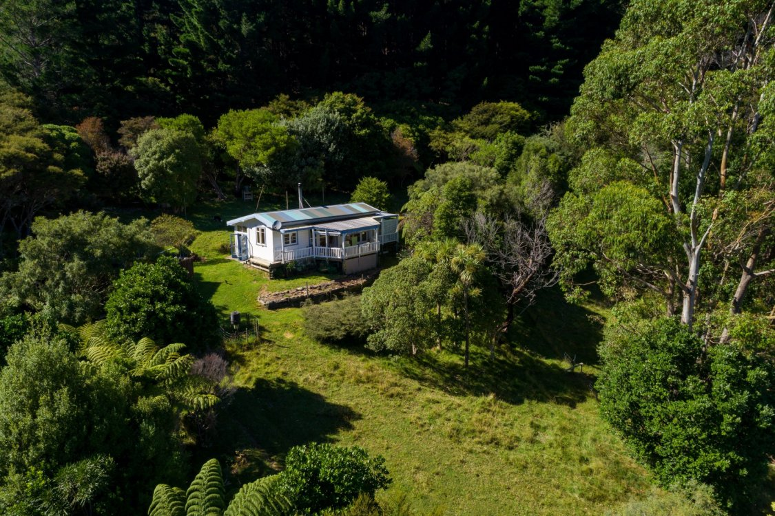 - Nikau Bay, Pelorus Sounds #4