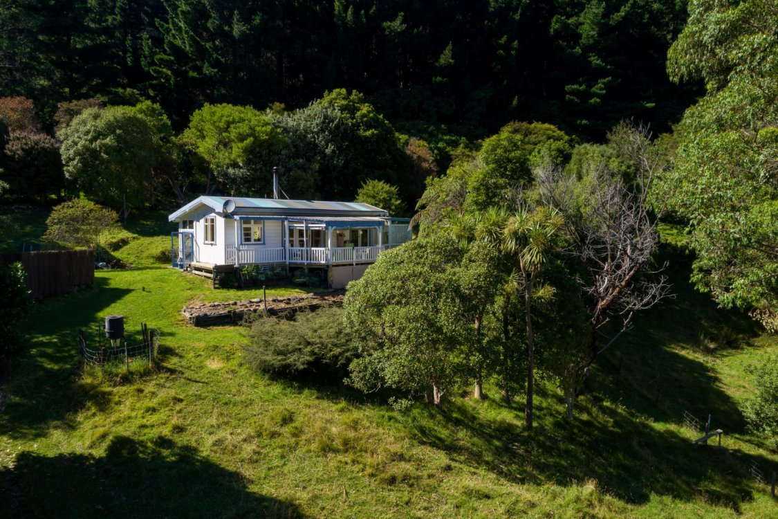 - Nikau Bay, Pelorus Sounds #5