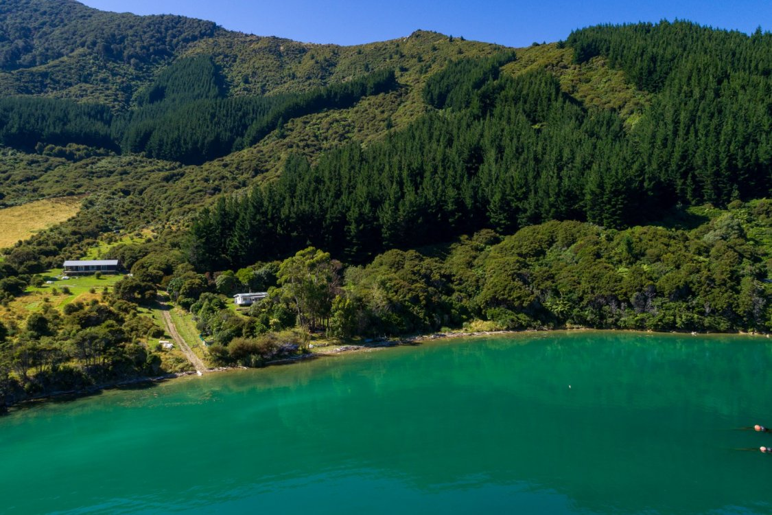 - Nikau Bay, Pelorus Sounds #7