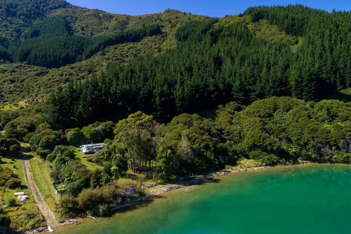 - Nikau Bay, Pelorus Sounds #8