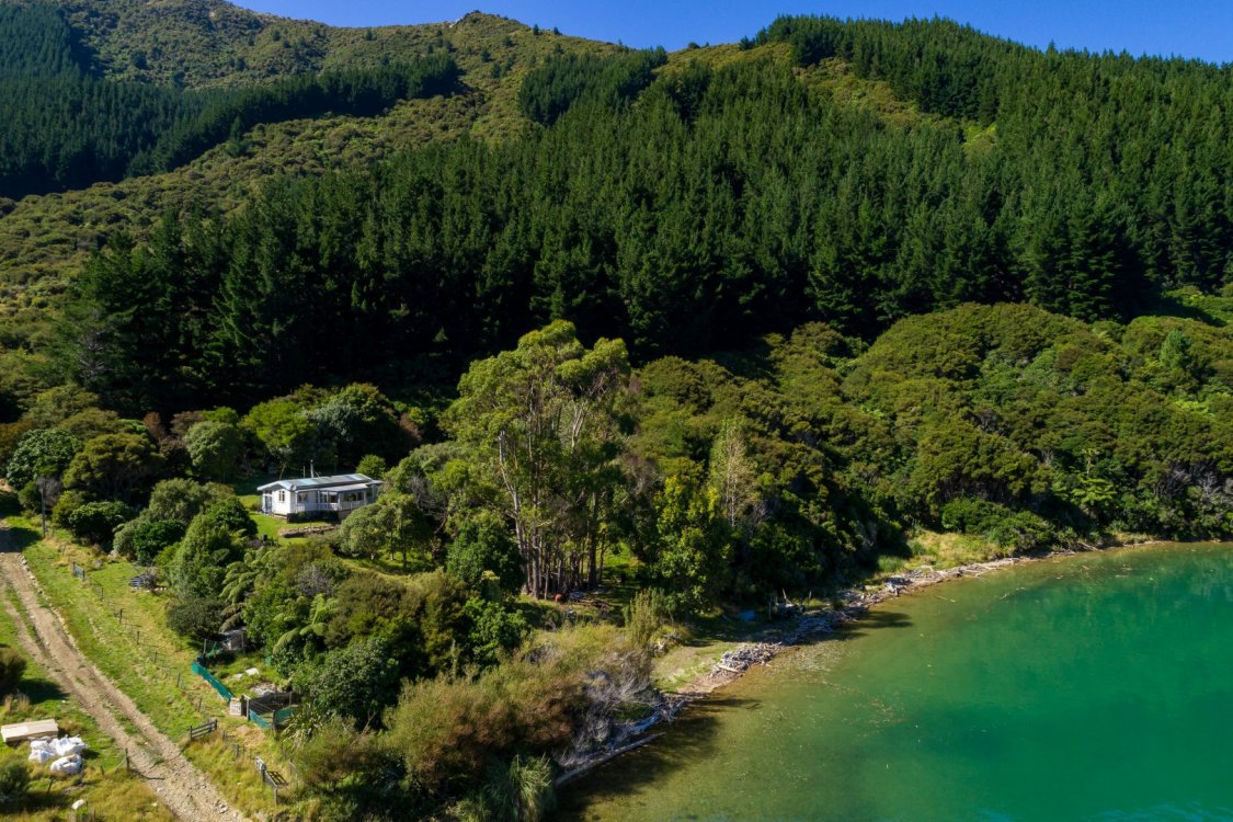 - Nikau Bay, Pelorus Sounds #9