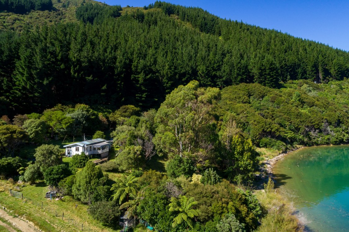 - Nikau Bay, Pelorus Sounds #10