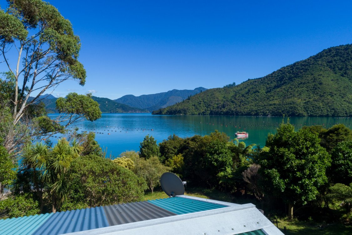 - Nikau Bay, Pelorus Sounds #12