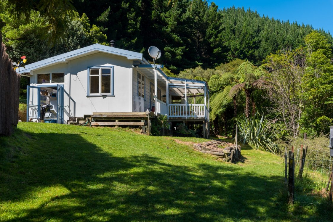 - Nikau Bay, Pelorus Sounds #17