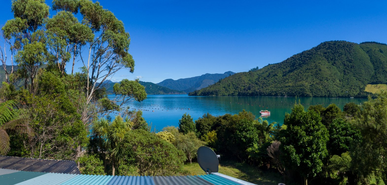 - Nikau Bay, Pelorus Sounds #23