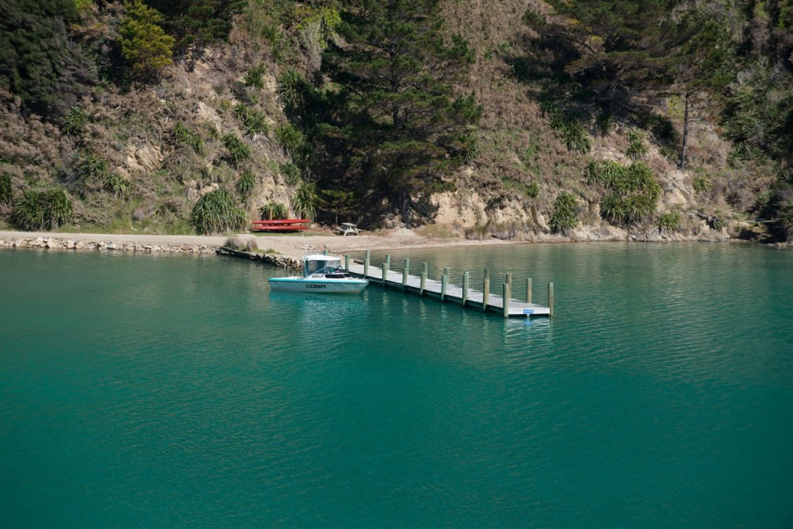 - Oyster Bay, Queen Charlotte Sound #2
