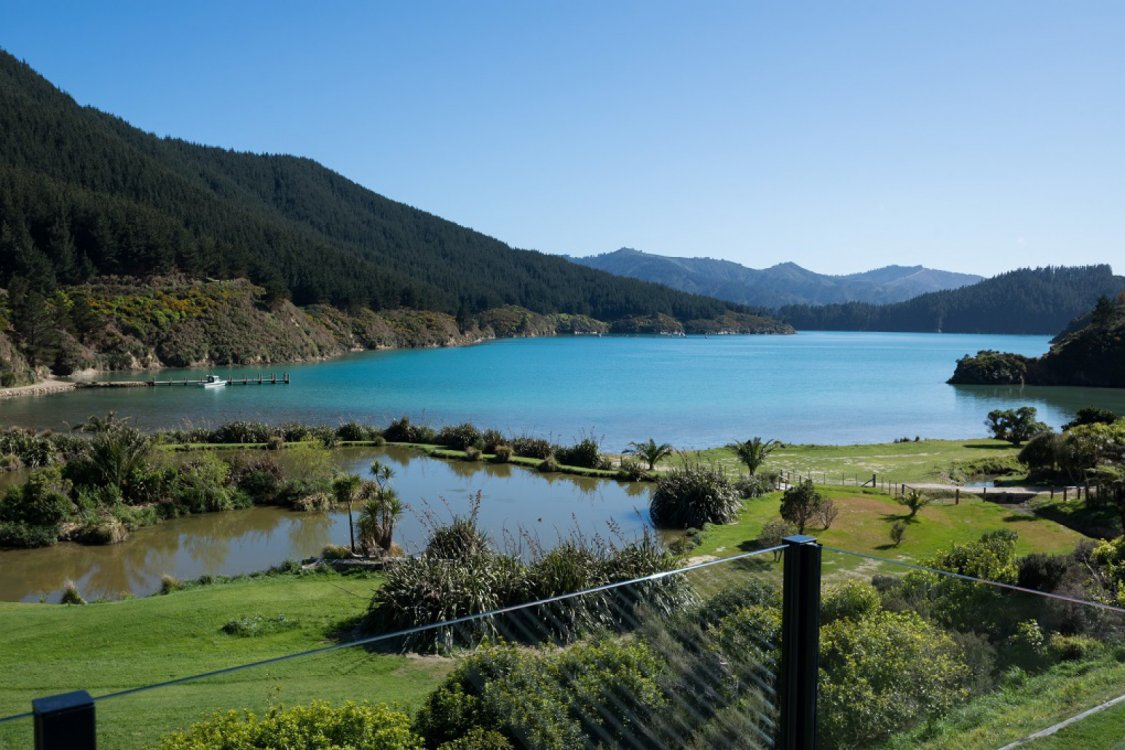 - Oyster Bay, Queen Charlotte Sound #1