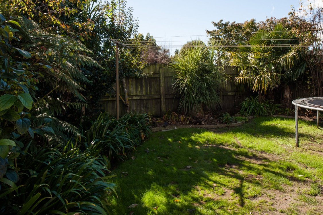 21A Lane Street, Blenheim #12