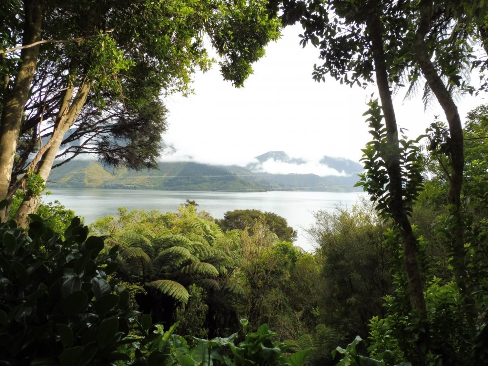 126 Moetapu Bay Road, Mahau Sound #8