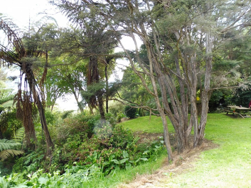 126 Moetapu Bay Road, Mahau Sound #13