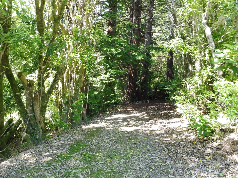 126 Moetapu Bay Road, Mahau Sound #1 -- listing/5957/m.jpeg
