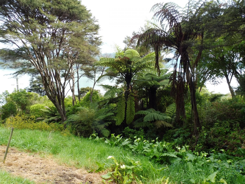 126 Moetapu Bay Road, Mahau Sound #14 -- listing/5957/n.jpeg