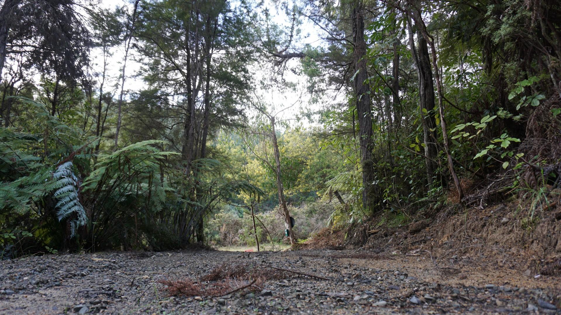 203 Kaiteriteri-Sandy Bay Road, Kaiteriteri #7 -- listing/6738/f.jpeg