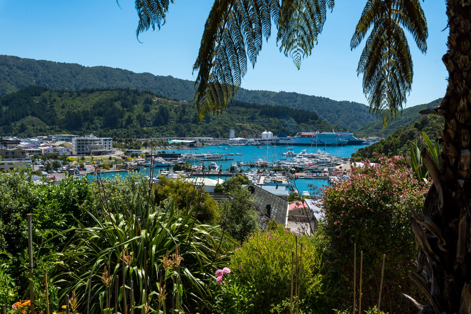 26 Seaview Crescent, Picton #2 -- listing/8130/a.jpeg