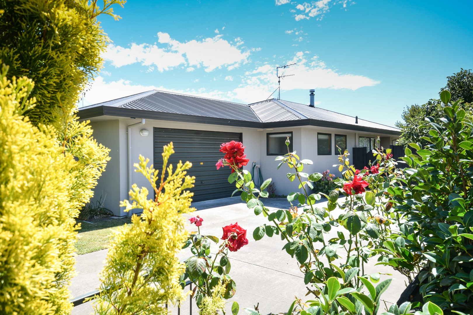 67 Muller Road, Blenheim #17 -- listing/8191/q.jpeg