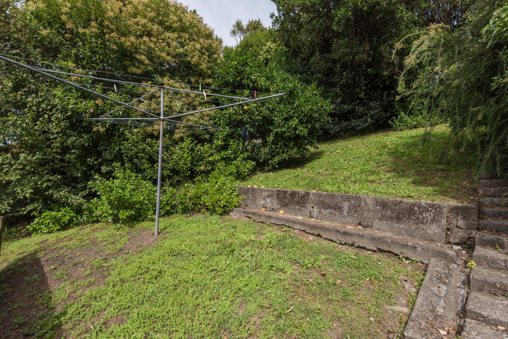 17 Queens Road, Nelson #7 -- listing/8614/f.jpeg