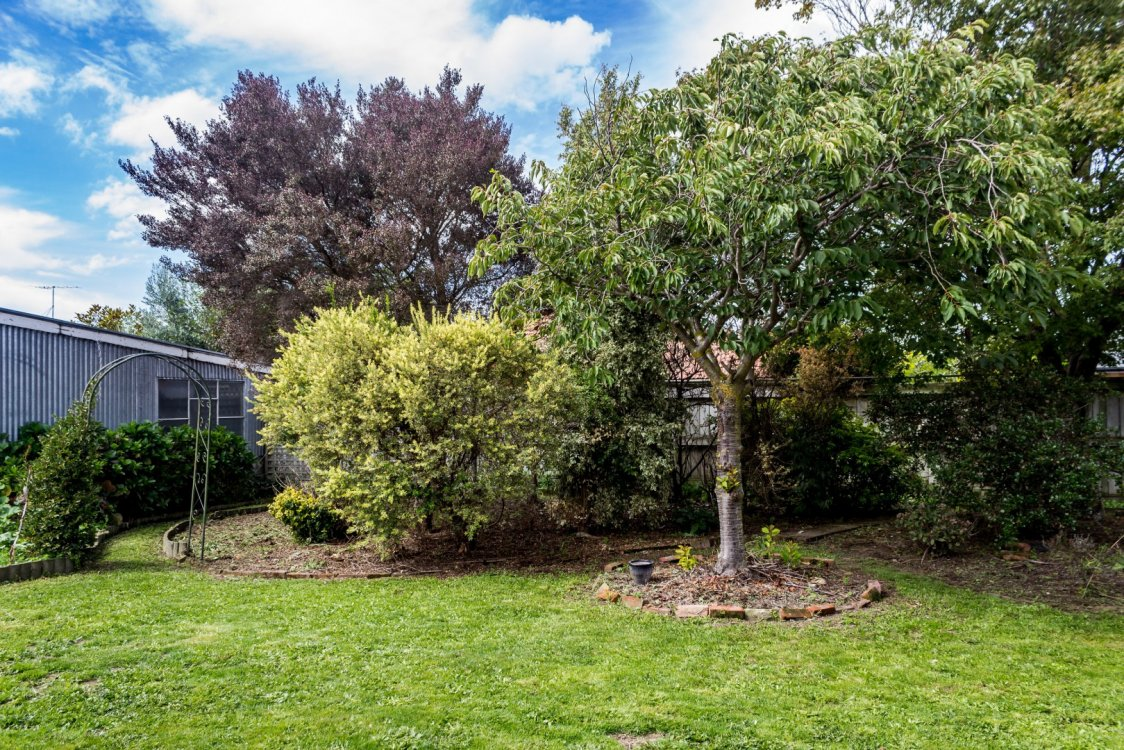 20 Glover Crescent, Blenheim #11