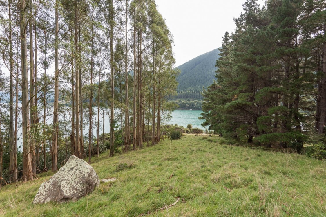 - Four Fathom Bay, Pelorus Sounds #13