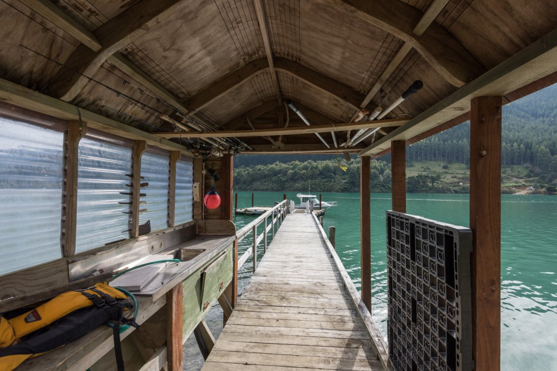 - Four Fathom Bay, Pelorus Sounds #15