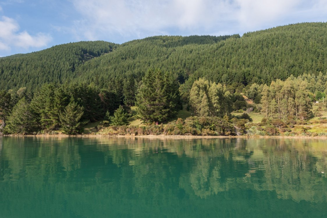 - Four Fathom Bay, Pelorus Sounds #18