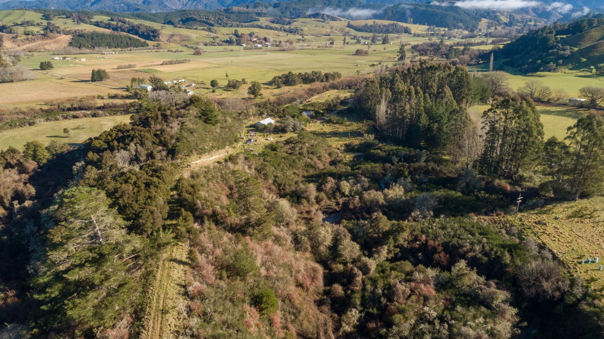 82 Forest Creek Road, Tapawera #3 -- listing/9286/b.jpeg