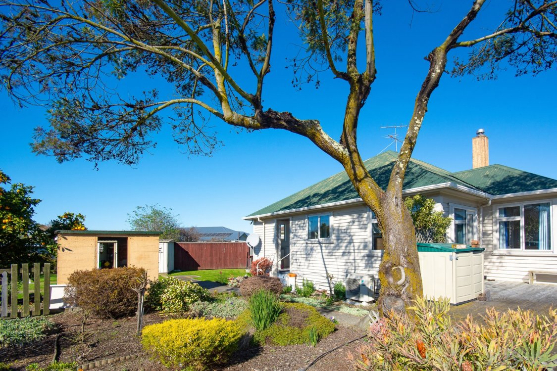 16 Churchill Street, Blenheim #6
