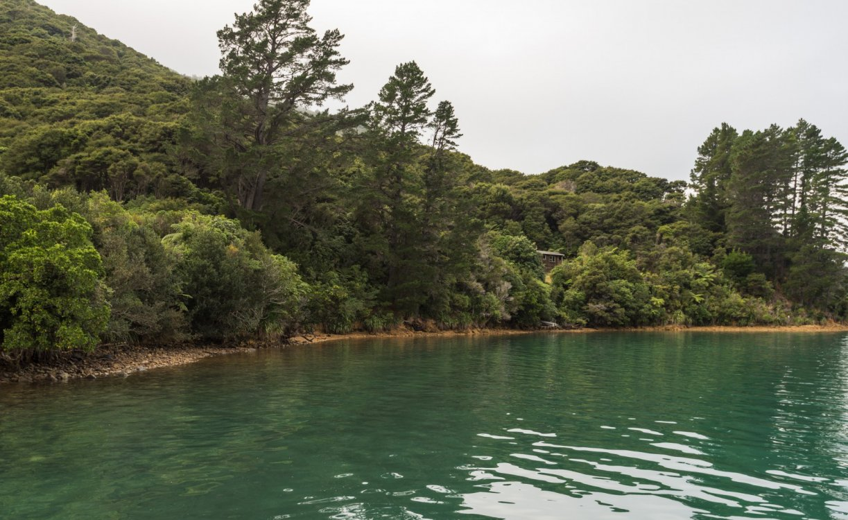 Lot 1 Miro Bay, Pelorus Sounds #6